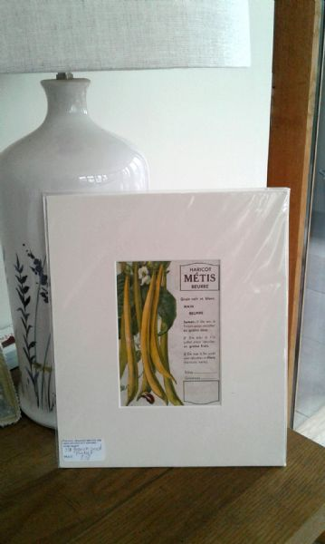 Original French Seed packet - haricot Metis